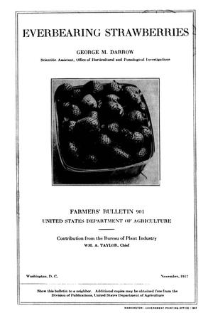 Primary view of object titled 'Everbearing Strawberries'.
