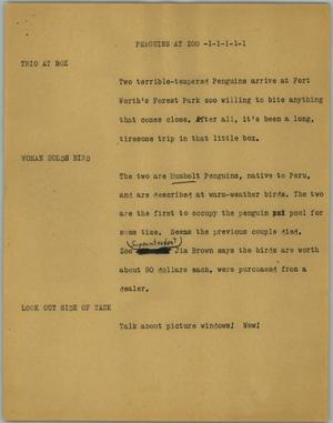 Primary view of object titled '[News Script: Penguins at zoo]'.