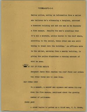 "Primary view of object titled '[News Script: ""Burglars""]'."