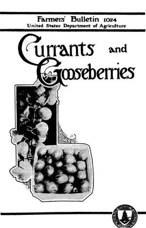 Primary view of object titled 'Currants and Gooseberries'.
