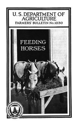 Primary view of Feeding Horses