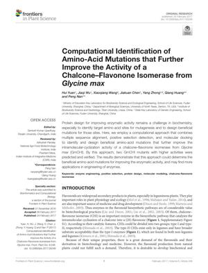 Computational Identification of Amino-Acid Mutations that Further Improve the Activity of a Chalcone-Flavonone Isomerase from Glycine max