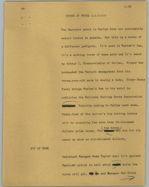 Primary view of object titled '[News Script: Horse at motel]'.