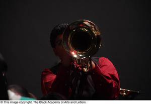 Primary view of object titled '[Brass Player Facing Camera]'.