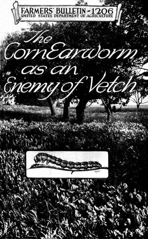 Primary view of object titled 'The Corn Earworm As an Enemy of Vetch'.