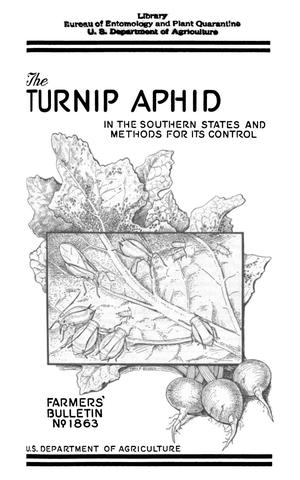Primary view of object titled 'The Turnip Aphid in the Southern States and Methods for Its Control'.