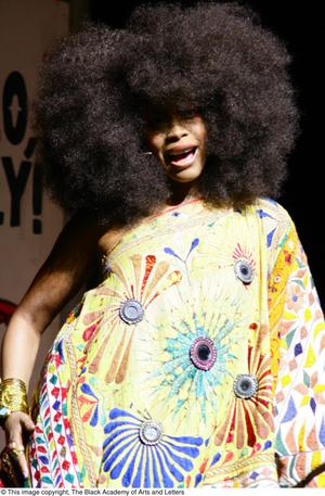 Primary view of object titled '[Erykah Badu Performing on Stage]'.