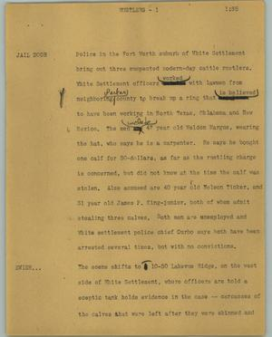 Primary view of object titled '[News Script: Rustlers]'.