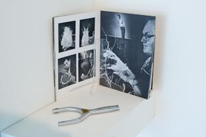 Primary view of object titled '[Photo Book and Sling Shot at Exhibit]'.