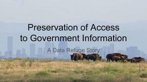 Preservation of Access to Government Information