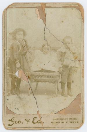 Primary view of object titled '[Irene Biffle and siblings]'.