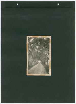 Primary view of object titled '[Page 13 of Byrd Williams Jr. scrapbook]'.