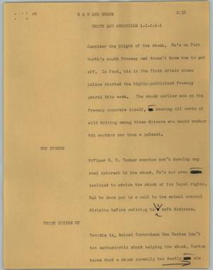 Primary view of object titled '[News Script: Skunk and armadillo]'.