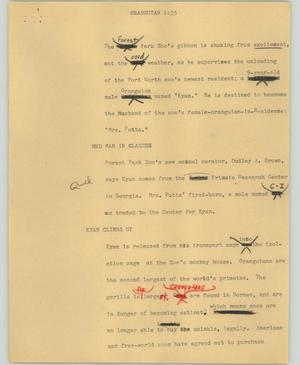 Primary view of object titled '[News Script: Orangutan]'.