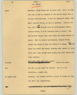 Primary view of object titled '[News Script: Sheep]'.