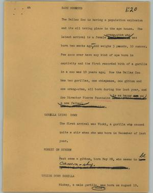 Primary view of object titled '[News Script: Baby monkeys]'.