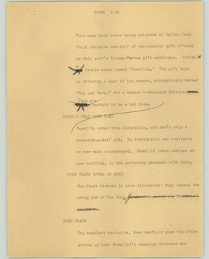 Primary view of object titled '[News Script: Camel]'.