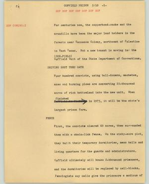 Primary view of object titled '[News Script: Coffield prison]'.