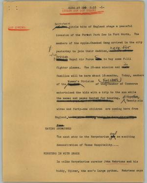 Primary view of object titled '[News Script: Kids at zoo]'.