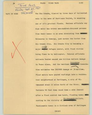 Primary view of object titled '[News Script: Flood]'.