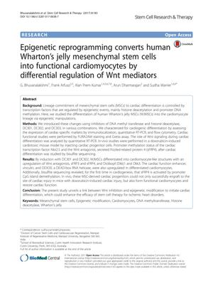 Primary view of object titled 'Epigenetic reprogramming converts human Wharton's jelly mesenchymal stem cells into functional cardiomyocytes by differential regulation of Wnt mediators'.