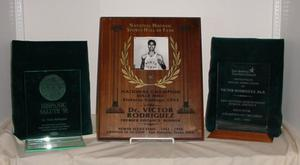 Primary view of object titled '[[Victor Rodríguez Lifetime Achievements and Awards Display, 3]'.