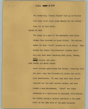 Primary view of object titled '[News Script: Rhinos]'.