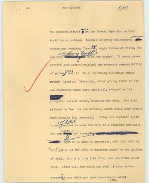 Primary view of object titled '[News Script: New giraffe]'.