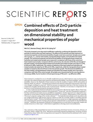 Primary view of object titled 'Combined effects of ZnO particle deposition and heat treatment on dimensional stability and mechanical properties of poplar wood'.