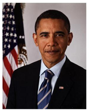 Primary view of object titled '[Official Presidential Portrait of Barack H. Obama]'.