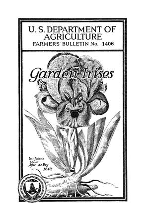 Primary view of object titled 'Garden irises.'.