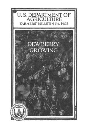 Primary view of object titled 'Dewberry growing.'.