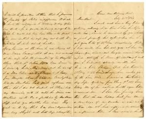 Primary view of [Letter from David Fentress to his Aunt, July 21, 1863]