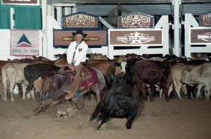 Primary view of object titled 'Cutting Horse Competition: Image 1997_D-100_06'.