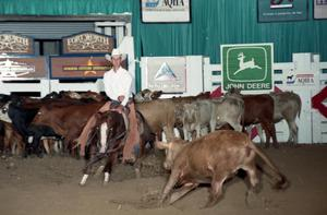 Primary view of object titled 'Cutting Horse Competition: Image 1997_D-100_09'.