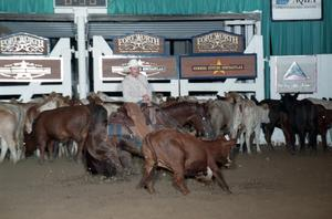 Primary view of object titled 'Cutting Horse Competition: Image 1997_D-102_17'.
