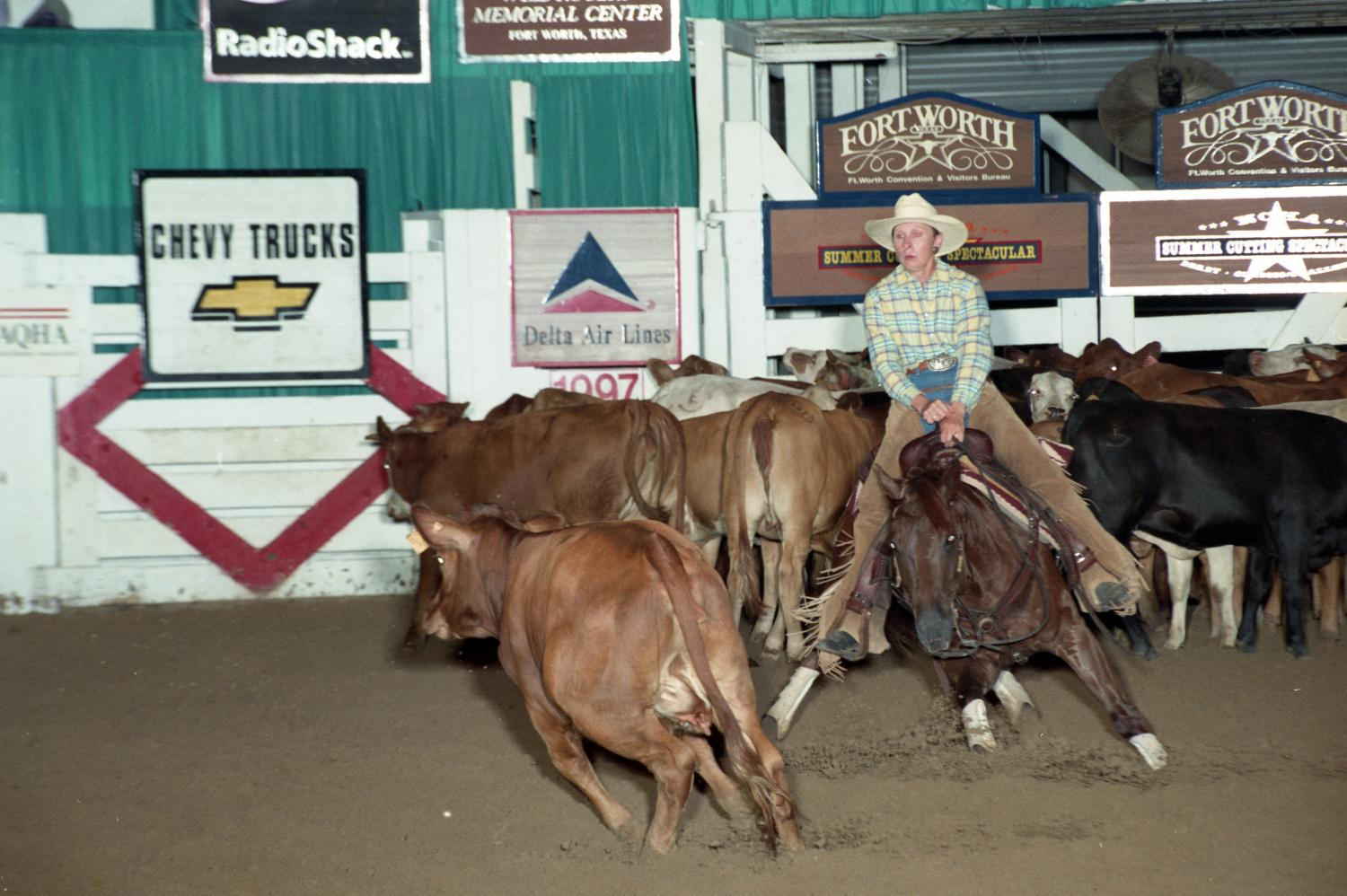 Cutting Horse Competition: Image 1997_D-108_28                                                                                                      [Sequence #]: 1 of 1