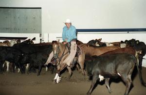 Primary view of object titled 'Cutting Horse Competition: Image 1997_D-10_01'.