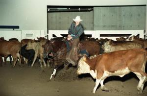 Primary view of object titled 'Cutting Horse Competition: Image 1997_D-10_08'.