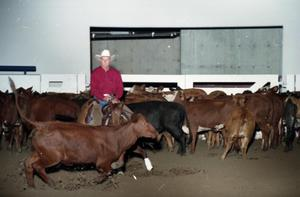 Primary view of object titled 'Cutting Horse Competition: Image 1997_D-10_16'.