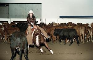 Primary view of object titled 'Cutting Horse Competition: Image 1997_D-10_18'.