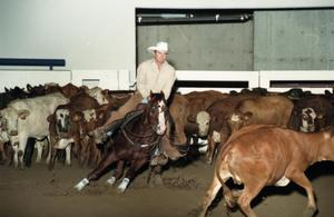 Primary view of object titled 'Cutting Horse Competition: Image 1997_D-10_19'.