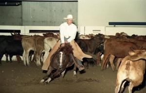 Primary view of object titled 'Cutting Horse Competition: Image 1997_D-10_32'.