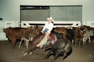 Primary view of object titled 'Cutting Horse Competition: Image 1997_D-10_34'.