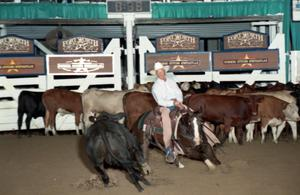 Primary view of object titled 'Cutting Horse Competition: Image 1997_D-111_25'.