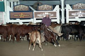Primary view of object titled 'Cutting Horse Competition: Image 1997_D-111_35'.