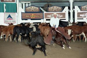 Primary view of object titled 'Cutting Horse Competition: Image 1997_D-113_07'.