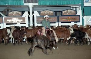 Primary view of object titled 'Cutting Horse Competition: Image 1997_D-117_35'.