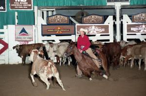 Primary view of object titled 'Cutting Horse Competition: Image 1997_D-118_16'.