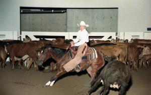 Primary view of object titled 'Cutting Horse Competition: Image 1997_D-11_01'.